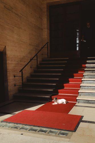 carpet dealers sacramento roseville folsom